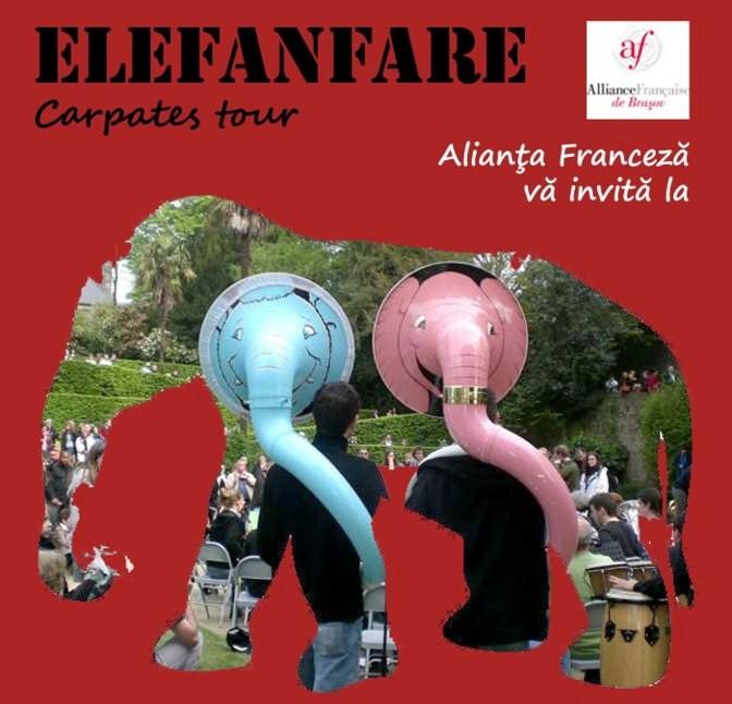 elefant_alianta franceza_mic