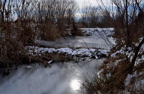 baraje castori Fagaras feb 022