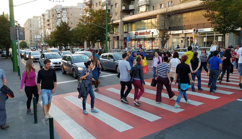 Protest pe zebra1