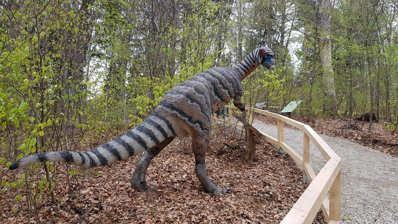 dino_dinozaur