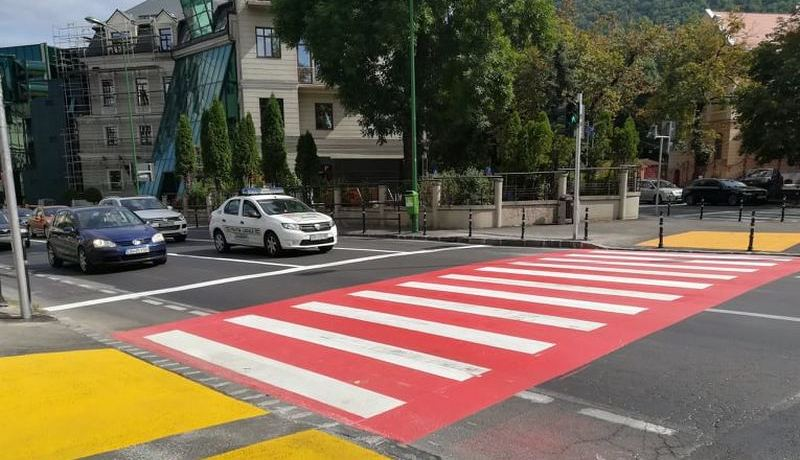 zebra_primarie2_mic