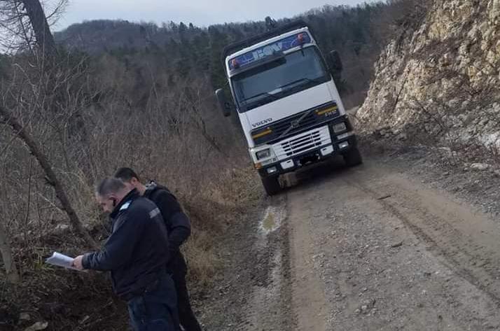 transport ilegal lemn