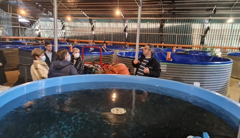 piscicultura brasov1